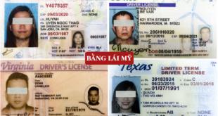 Đổi bằng lái xe Mỹ sang Việt Nam cấp tốc