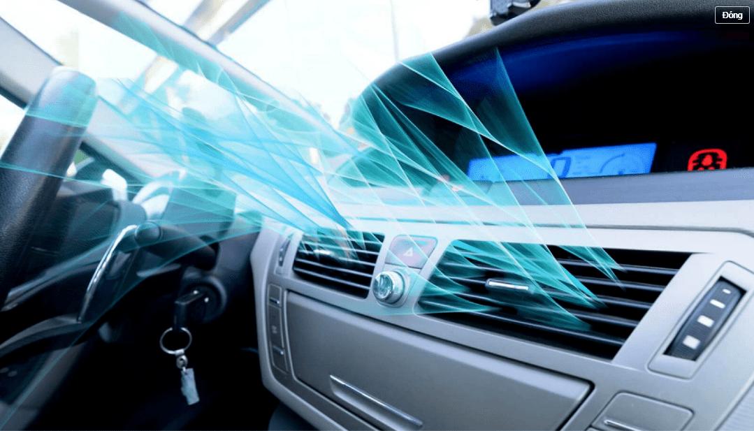 Mẹo đuổi ruồi muỗi ra khỏi xe ô tô hiệu quả